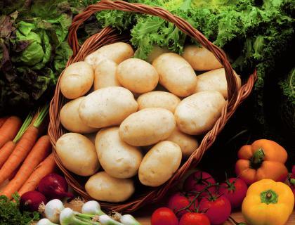 Semenski krompir: Za vrt najprimernejša izbira odpornih sort