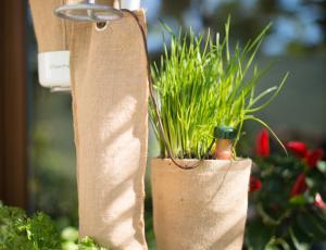 Urban Planty - vertikalno stojalo za vzgojo rastlin