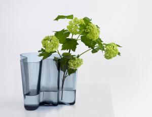 Kultna vaza praznuje 80 let
