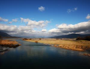 2. februar - svetovni dan mokrišč