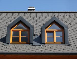 Stavbno pohištvo: Lesena predvsem za hiše, plastična za stanovanja