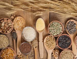 Prehranska prihodnost: Seme mora spet postati skupno dobro