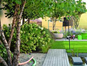 Okrasni vrt: Zeleni poletni blues