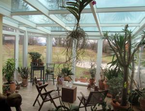 Zimski vrt: Vdor toplote najbolje preprečujejo zunanja senčila