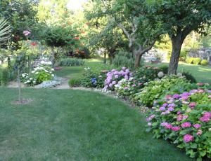 Natečaj: Izbiramo najlepši cvetoči vrt