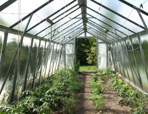 Rastlinjaki: Odporni na obtežitve, dovolj visoki, zračni