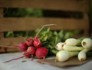 Lani v povprečju nižje cene kmetijskih pridelkov