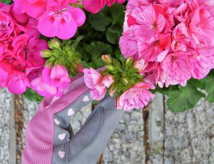 Slapovi cvetočega bogastva