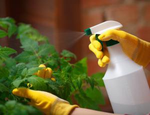 Kupljena sredstva za krepitev rastlin