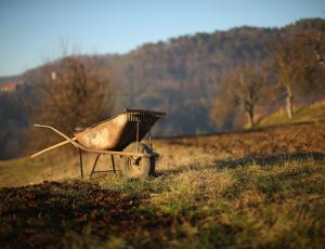 Okoljske organizacije sprožile evropsko pobudo za prepoved glifosata