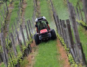 Nad zaraščanje kmetijskih zemljišč tudi z vladno uredbo