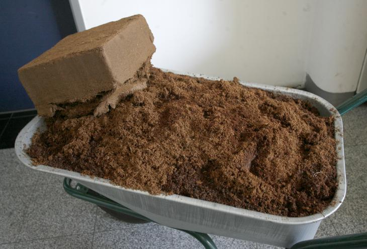 Iz stisnjene kocke kokosovih vlaken nastane ob dodatku vode zvrhana samokolnica substrata. - Foto: Mavric Pivk