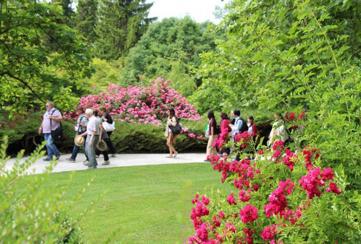 Ljubitelji vrtnic so prišli iz 32 držav z vseh celin sveta.