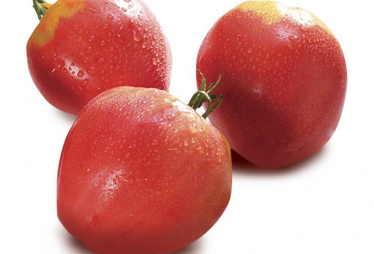 Domača paprika in paradižnik najbolj dišita