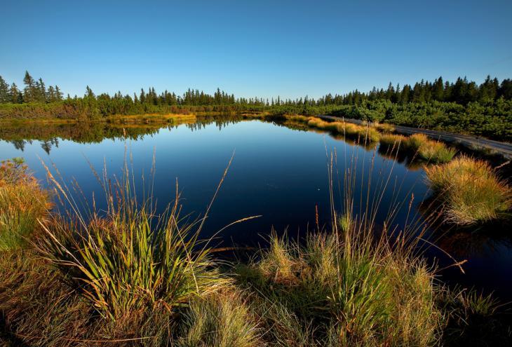 Lovrenška jezera - Foto: Unitur/dokumentacija Dela