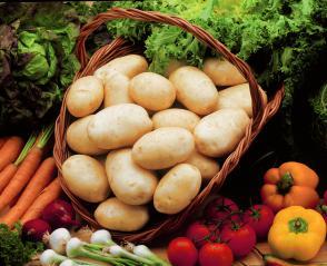 Semenski krompir: Za vrt najprimernejša izbira odpornih sort Slika 2