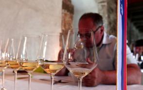Na ocenjevanju vin v Gornji Radgoni enologi izbrali 12 šampionov Slika 1