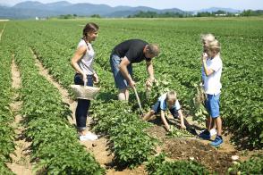 Kdo bo letošnji inovativni kmet/kmetica leta? Slika 2