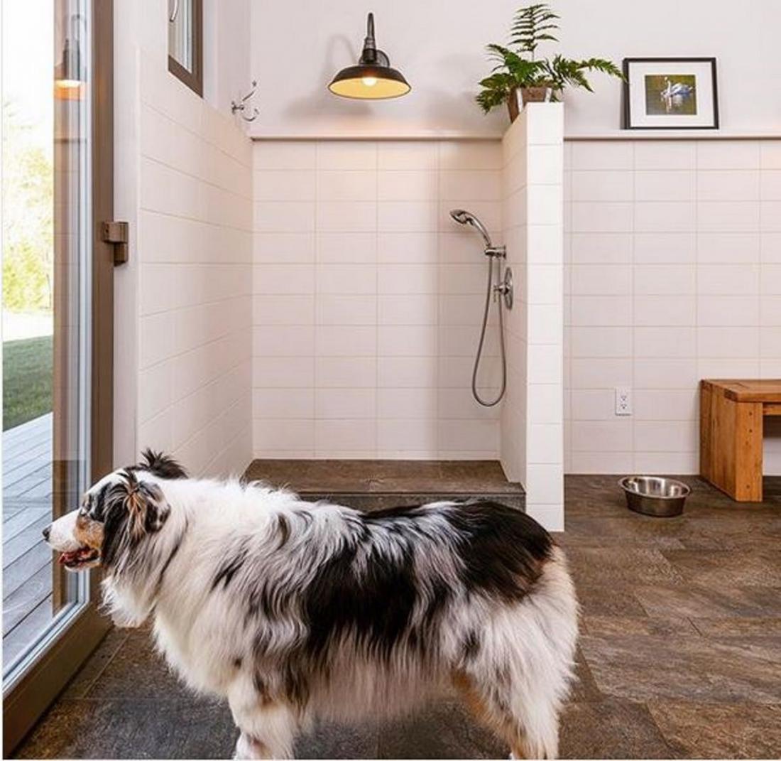 Poseben tuš za pse, umeščen v vežo. Foto: Instagram/bdarchitects