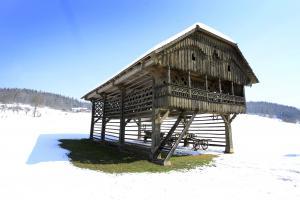 Les na prostem: Z domačim znanjem do dolgotrajne zaščite Slika 2