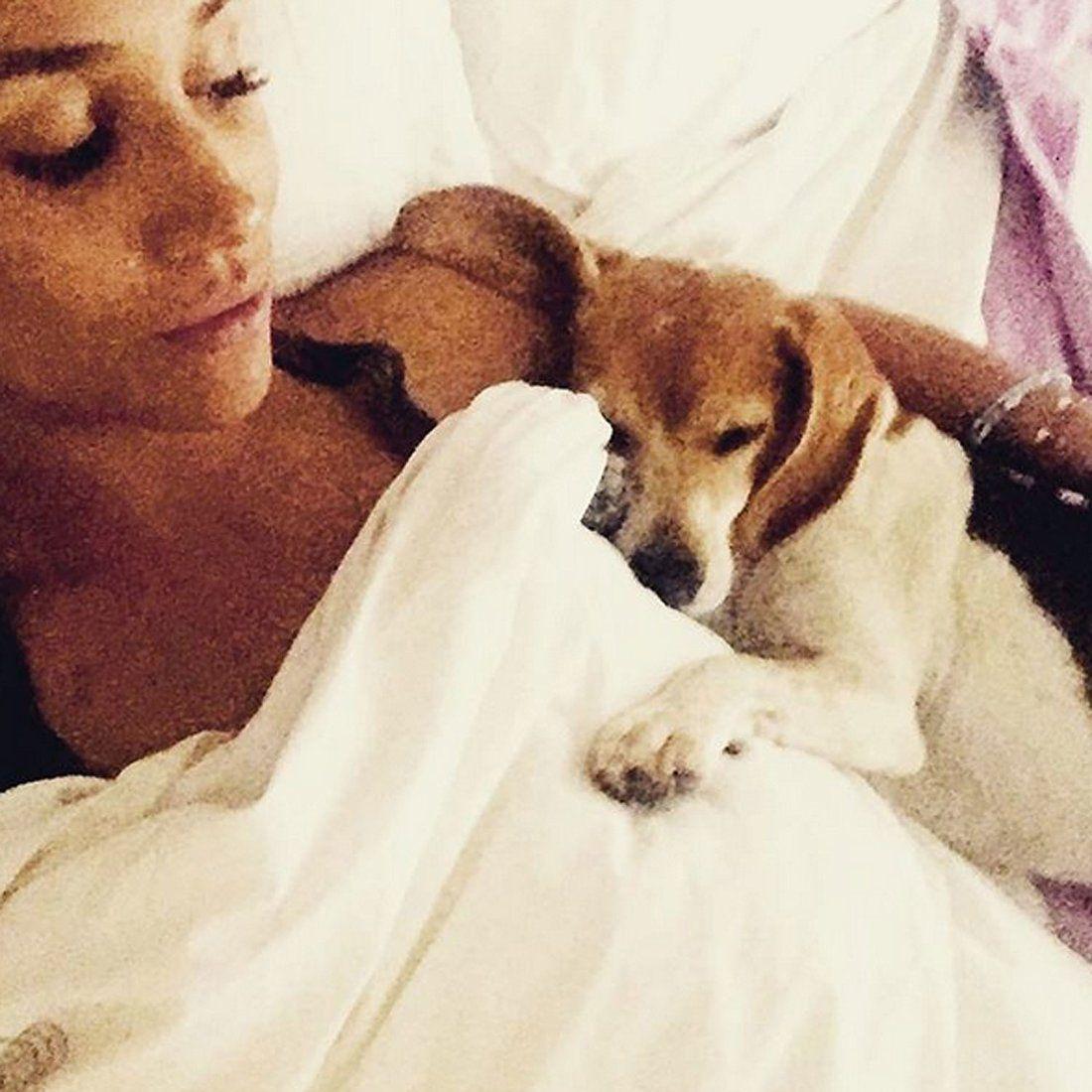 Meghan in njen posvojeni beagle Guy. FOTO: Meghan Markle/Instagram