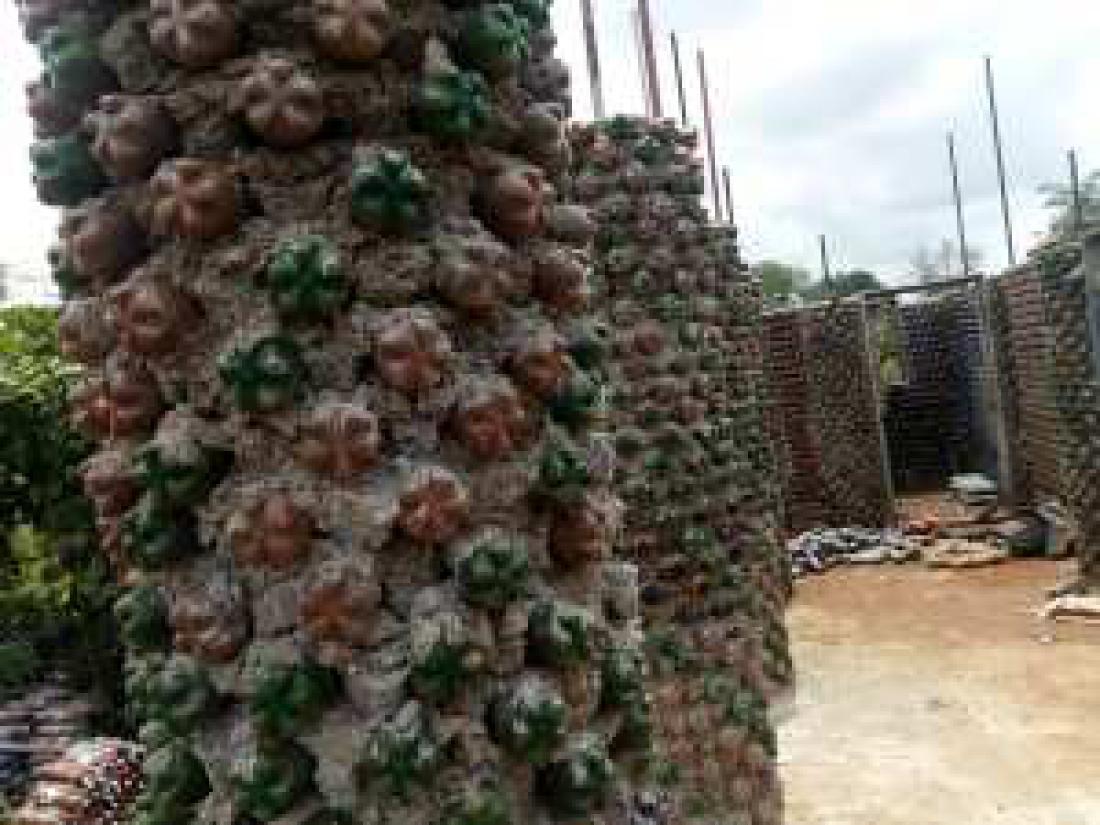 FOTO: dailynigerian
