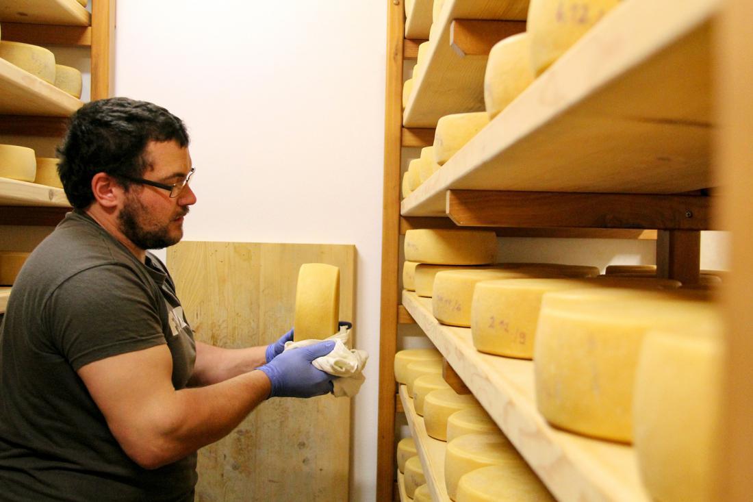 Andrej Sovdat iz Smasta pri Kobaridu dostavlja sir po vsej Severni Primorski, vse do Krasa (FOTO: Sara Leban).