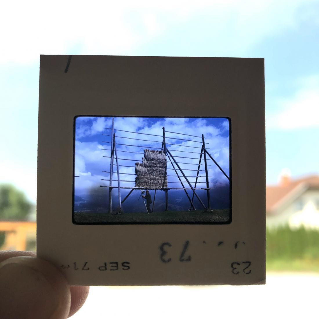 FOTO: arhiv Zavod Dežela kozolcev