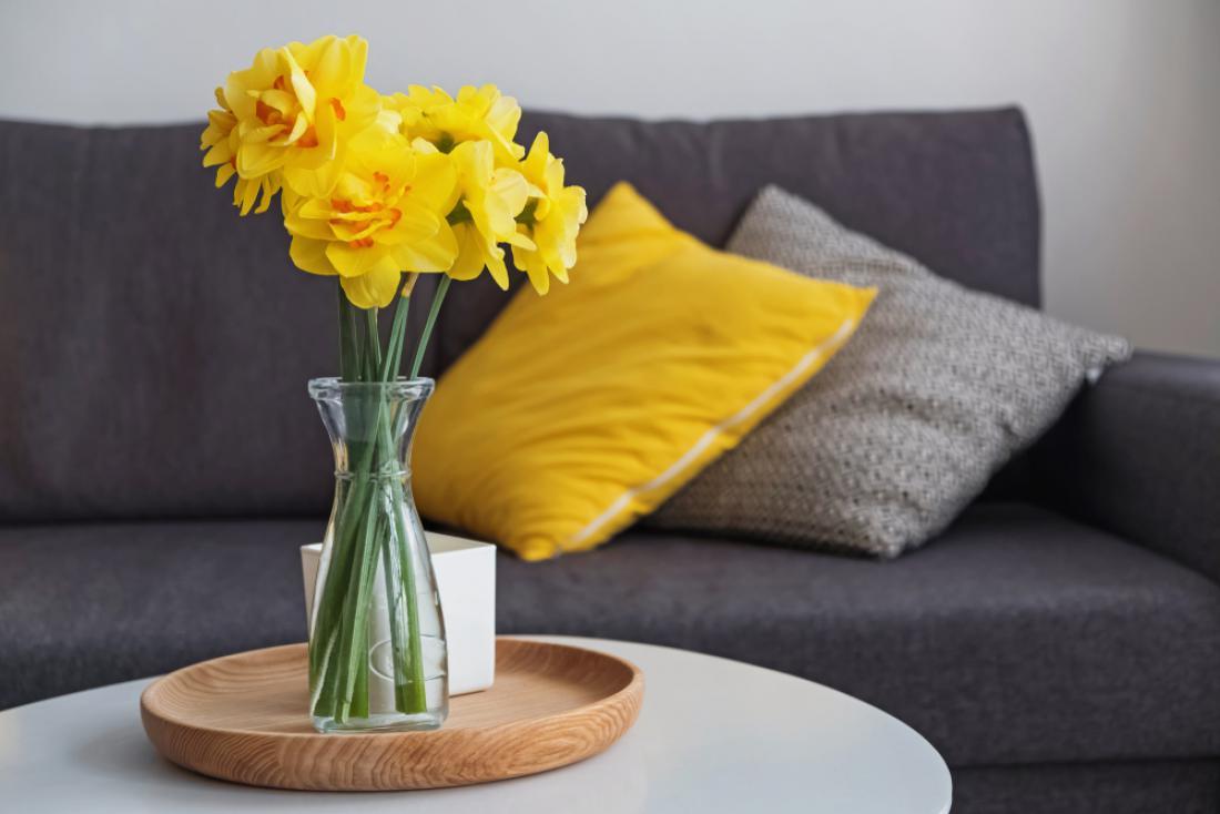Za hitro osvežitev z rumeno v kombinaciji sive: okrasne blazine in šopek pomladnega cvetja.