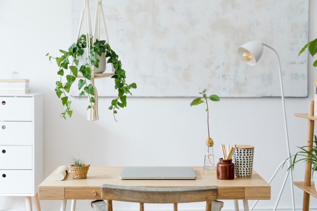 V domačo pisarno, zlasti če nimate veliko prostora, lahko umestite pleteno obešanko, ki visi s stropa. Vanjo pa postavite eno od visečih rastlin. FOTO: Followtheflow/Shutterstock