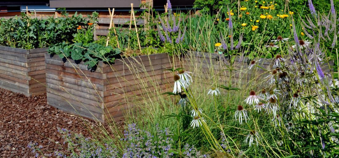 Pomemben del vrta ob hiši je zelenjavni vrt, na katerem mlada družina pridela vso zelenjavo, zelišča in jagodičevje. Večina vrtnin raste v dvignjenih gredah, ki imajo urejeno namakanje z deževnico.