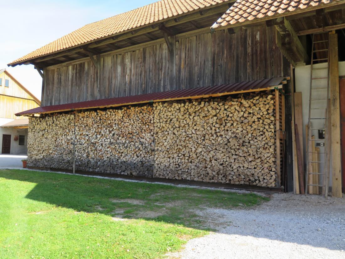 Za slovensko podeželje so polena tradicionalni energent.