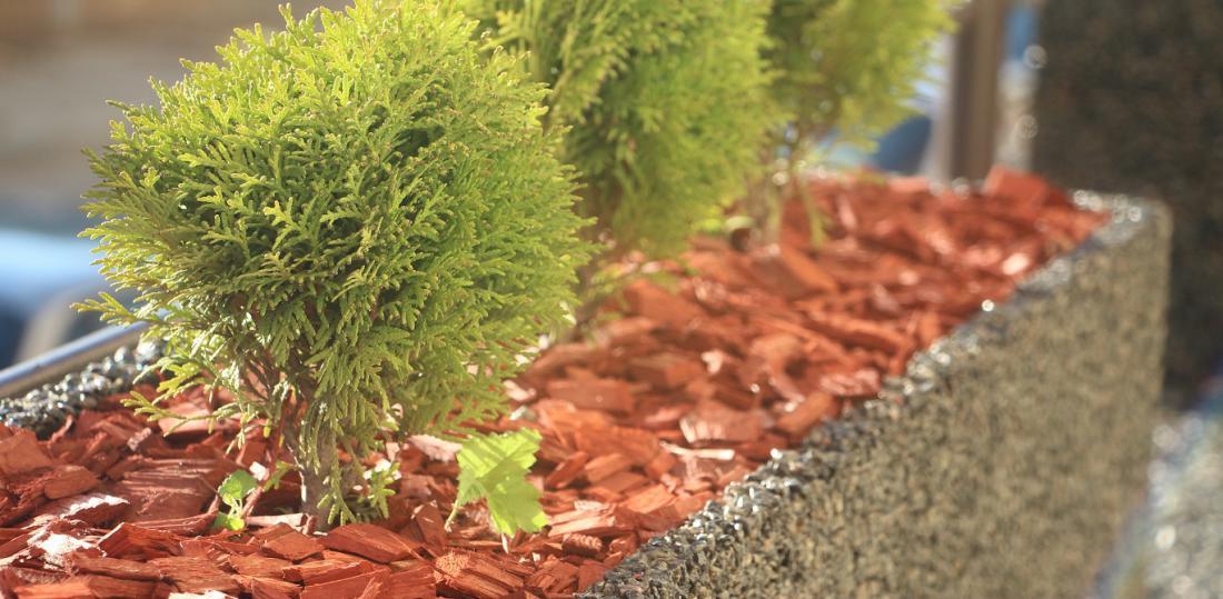 Zastirka upočasni izhlapevanje vlage in tla delno ščiti pred zmrzaljo. FOTO: anabaraulia/Shutterstock
