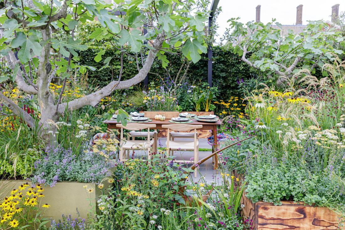 Po izboru obiskovalcev je bil najlepši mali vrt The Parsley Box Garden, ki ga je oblikoval Alan Williams. Foto: RHS/Sarah Cuttle