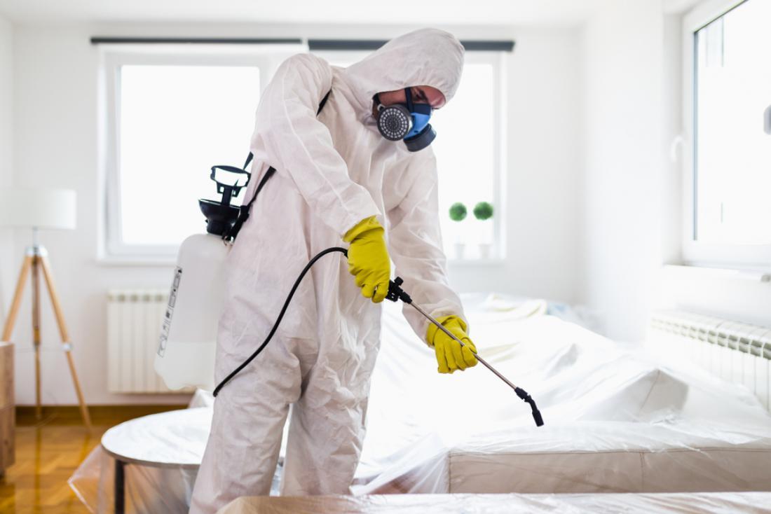 Veste, kakšna je razlika med čiščenjem, razkuževanjem ali dezinficiranjem površin? FOTO: hedgehog94/Shutterstock