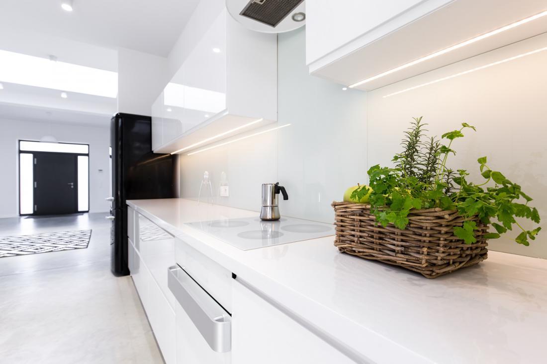 Kjer na pultu ni naravne svetlobe, moramo rastlinam zagotoviti umetno osvetlitev. FOTO: Photographee.eu/ Shutterstock