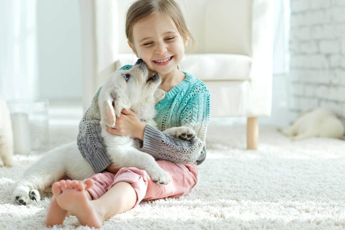 Psi znajo brati človeška čustva in razumejo tudi naš govor. FOTO: Nina Buday/Shutterstock