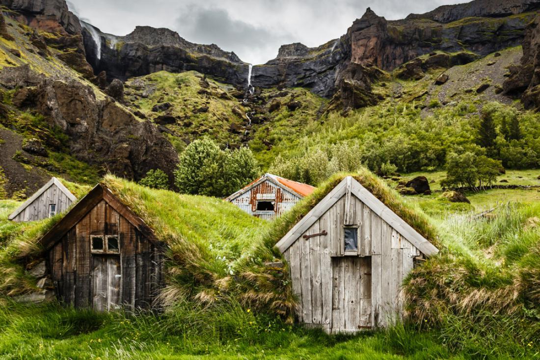 Glede na poročilo, ki ga je leta 2015 objavila Organizacija ZN za prehrano in kmetijstvo (FAO), le 0,5 odstotka površine Islandije danes pokrivajo gozdovi. FOTO: Shutterstock