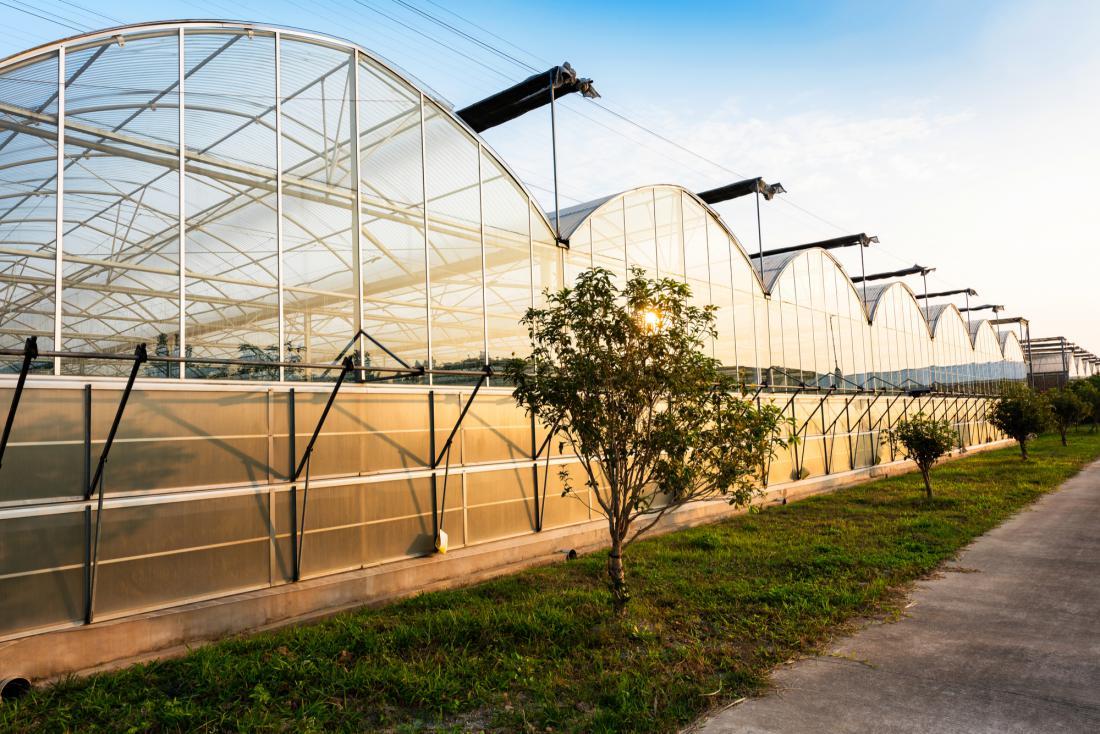 Za trajne rastlinjake nad 150 kvadratnih metrov je treba zagotoviti, da so varni, zato je za njih potrebno klasično gradbeno dovoljenje.