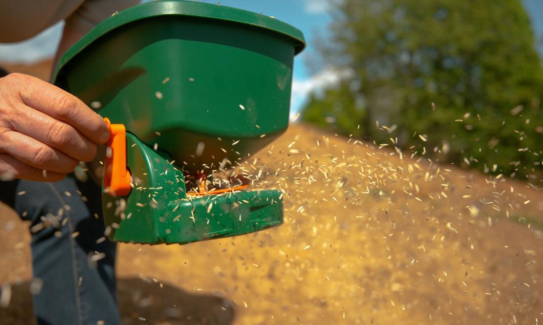 Drobno travno seme bomo enakomerneje posejali z ročnim sejalnikom. Foto Flystock/Shutterstock